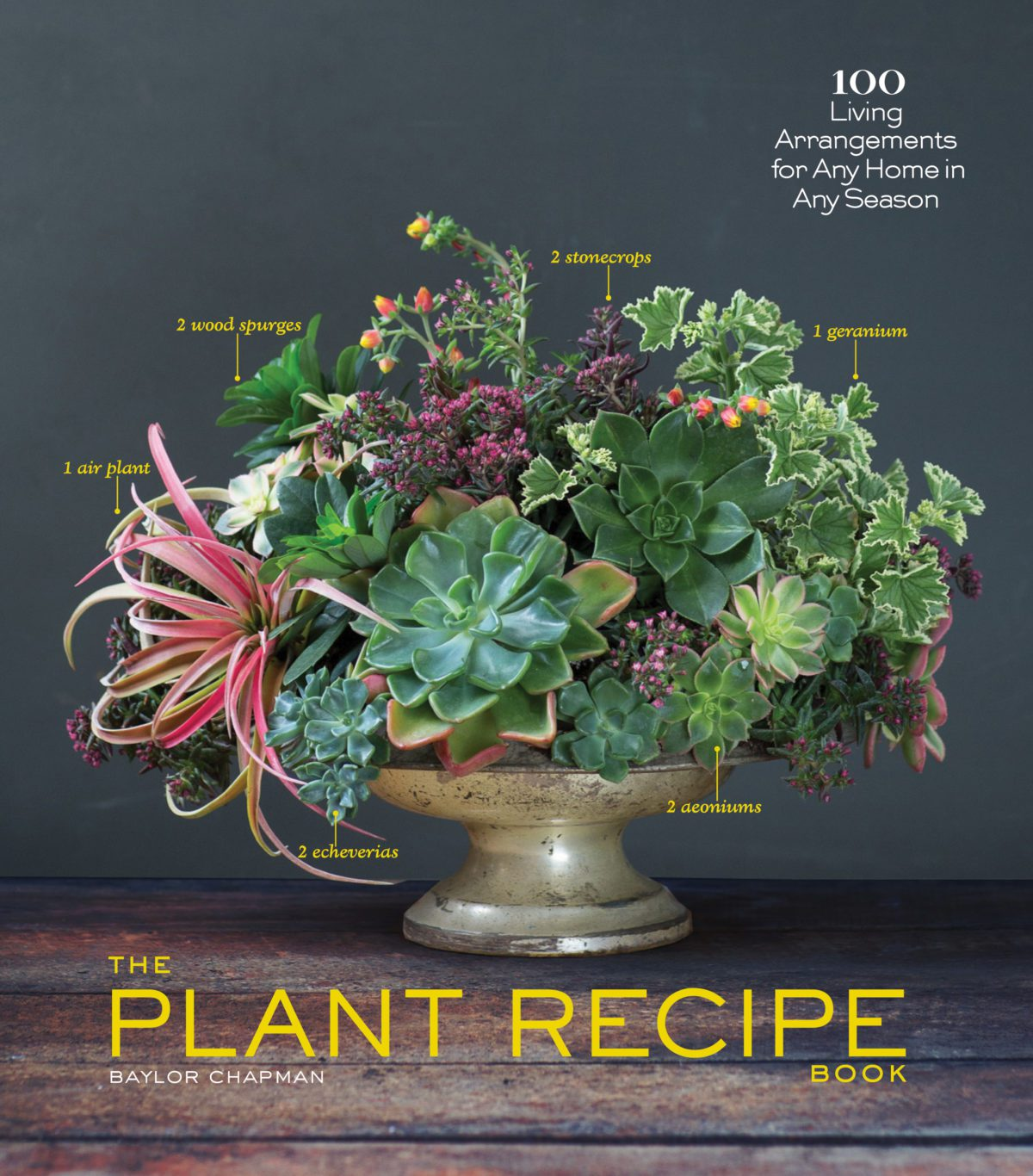 Plant Recipe Book by Baylor Chapman read create study in the pursuit